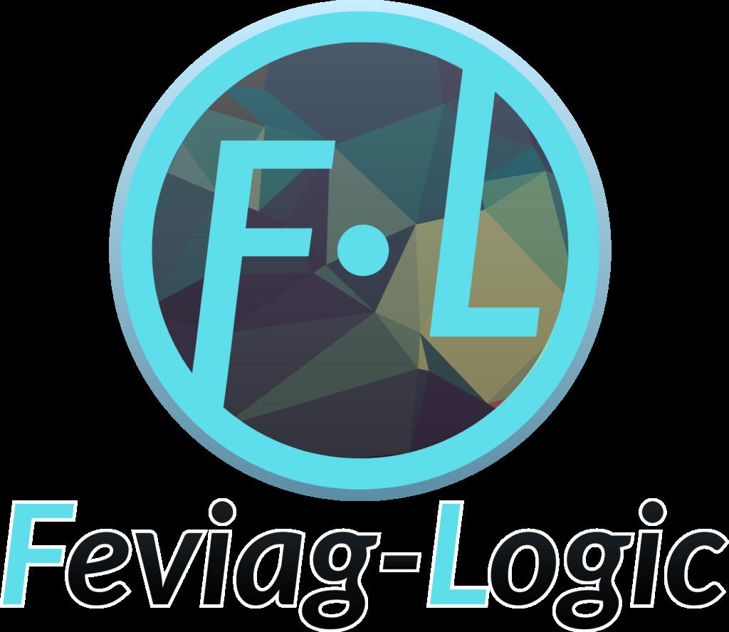Fundación de FEVIAG – Logic, S.L.